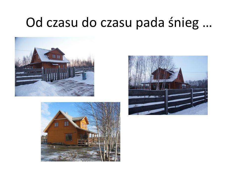 Domek już z blachą na dachu … Blacha na dach założona wiosną 2007.