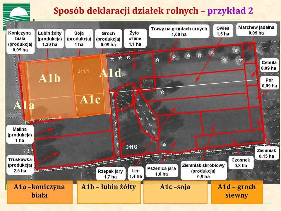 Agencja Restrukturyzacji i Modernizacji Rolnictwa Sposób deklaracji działek rolnych – przykład 2 A1a –koniczyna biała A1b – łubin żółtyA1c –sojaA1d –