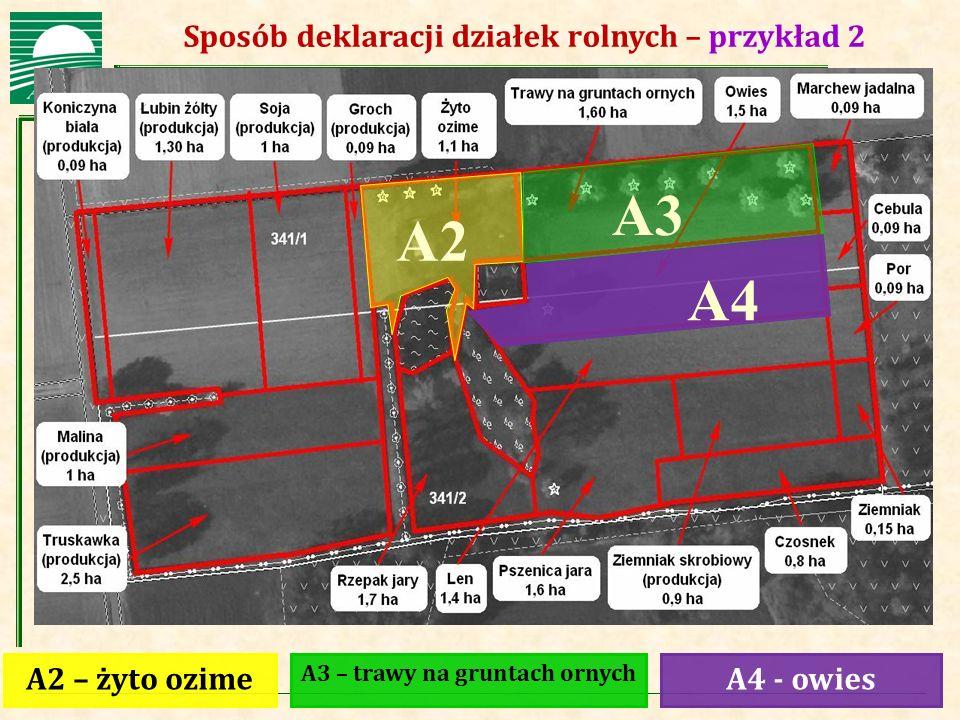 Agencja Restrukturyzacji i Modernizacji Rolnictwa Sposób deklaracji działek rolnych – przykład 2 A2 – żyto ozimeA4 - owies A3 – trawy na gruntach orny
