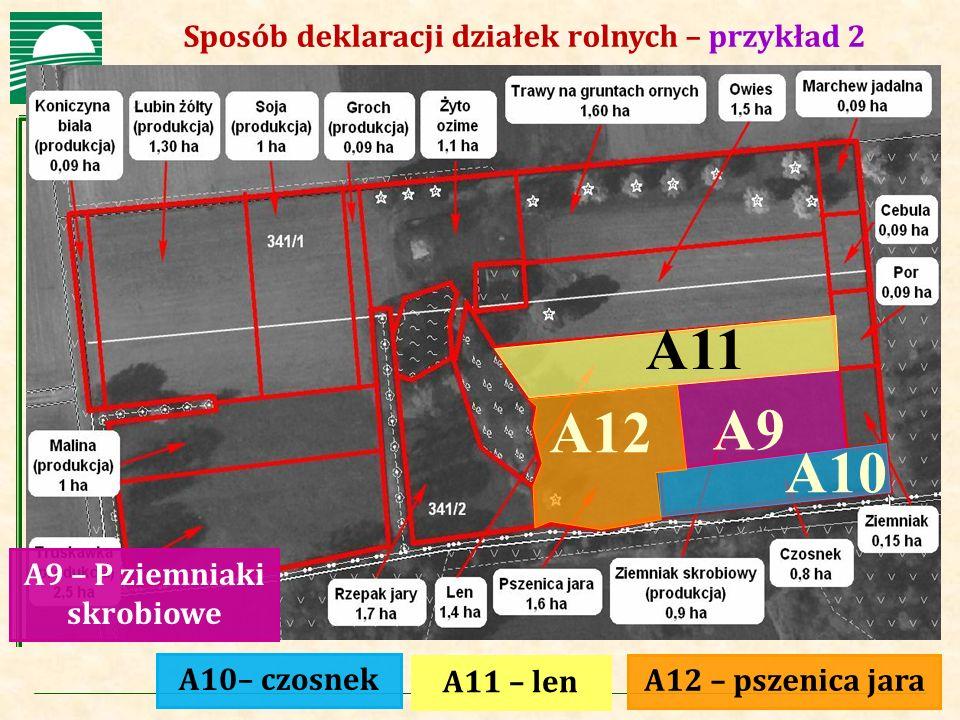 Agencja Restrukturyzacji i Modernizacji Rolnictwa Sposób deklaracji działek rolnych – przykład 2 A11 – len A12 – pszenica jara A9 – P ziemniaki skrobi