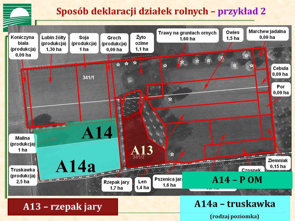 Agencja Restrukturyzacji i Modernizacji Rolnictwa Sposób deklaracji działek rolnych – przykład 2 A13 – rzepak jary A14 – P OM A14a – truskawka (rodzaj