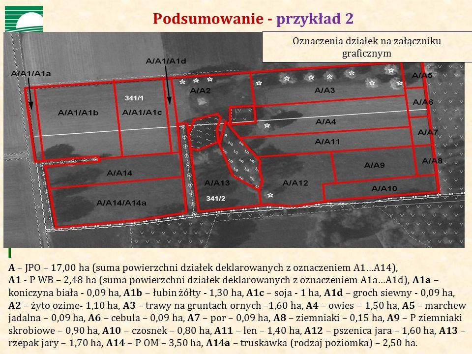 Agencja Restrukturyzacji i Modernizacji Rolnictwa Podsumowanie - przykład 2 A – JPO – 17,00 ha (suma powierzchni działek deklarowanych z oznaczeniem A