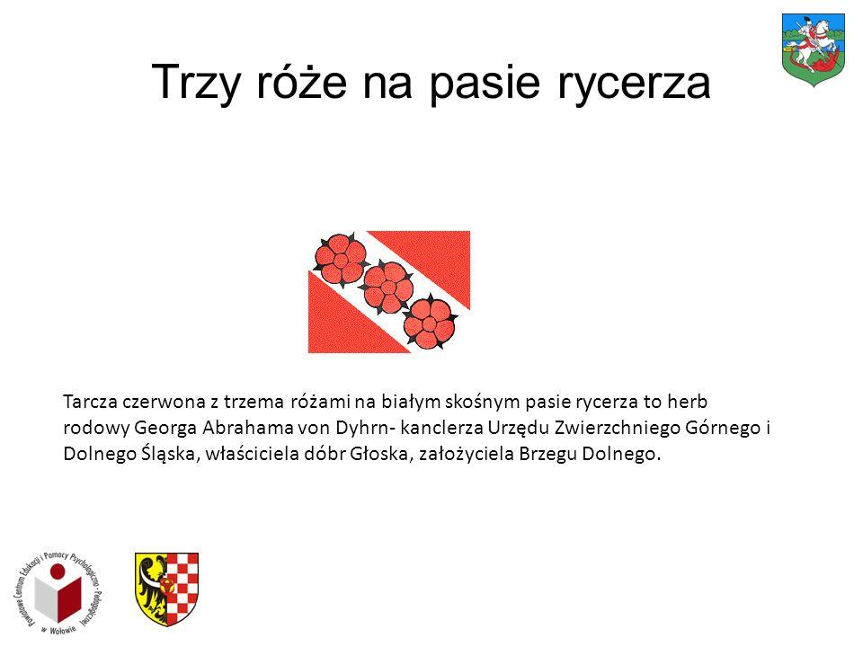Trzy róże na pasie rycerza Tarcza czerwona z trzema różami na białym skośnym pasie rycerza to herb rodowy Georga Abrahama von Dyhrn- kanclerza Urzędu Zwierzchniego Górnego i Dolnego Śląska, właściciela dóbr Głoska, założyciela Brzegu Dolnego.