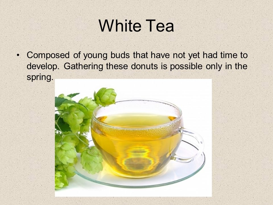 White Tea Composed of young buds that have not yet had time to develop.