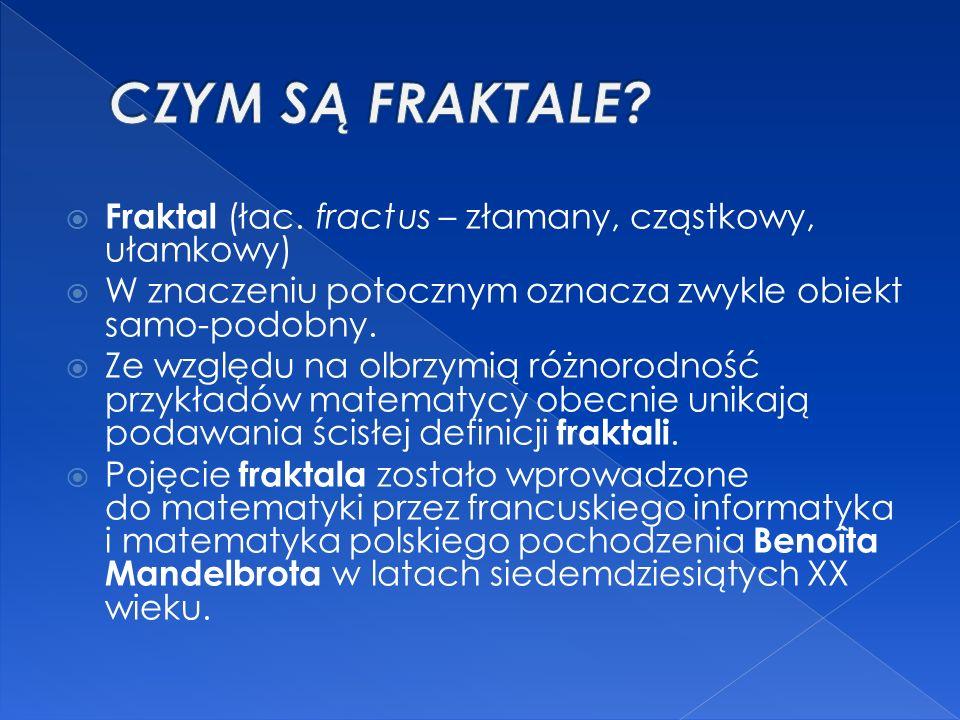  Fraktal (łac. fractus – złamany, cząstkowy, ułamkowy)  W znaczeniu potocznym oznacza zwykle obiekt samo-podobny.  Ze względu na olbrzymią różnorod