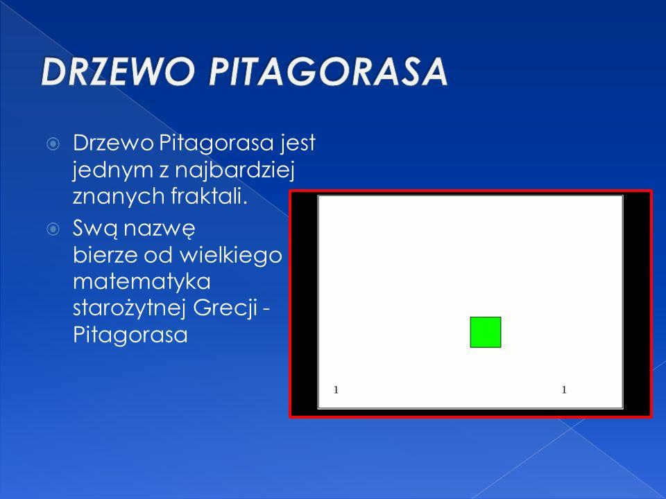  Drzewo Pitagorasa jest jednym z najbardziej znanych fraktali.  Swą nazwę bierze od wielkiego matematyka starożytnej Grecji - Pitagorasa
