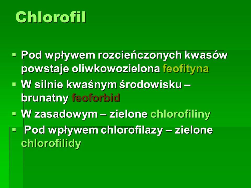 Chlorofil  Pod wpływem rozcieńczonych kwasów powstaje oliwkowozielona feofityna  W silnie kwaśnym środowisku – brunatny feoforbid  W zasadowym – zi