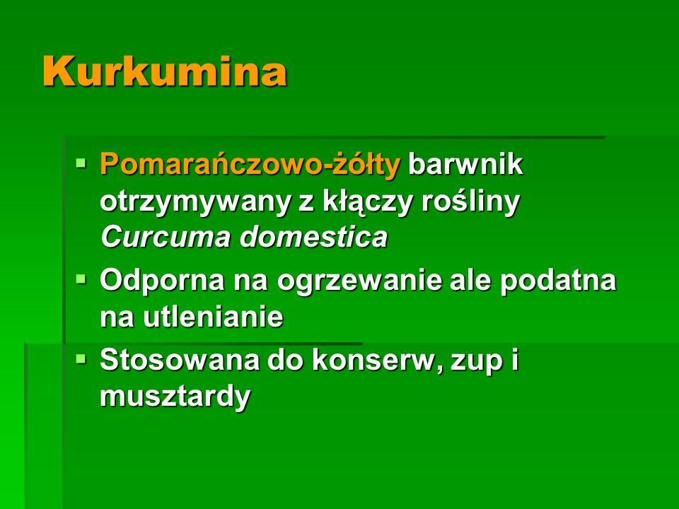 Kurkumina  Pomarańczowo-żółty barwnik otrzymywany z kłączy rośliny Curcuma domestica  Odporna na ogrzewanie ale podatna na utlenianie  Stosowana do