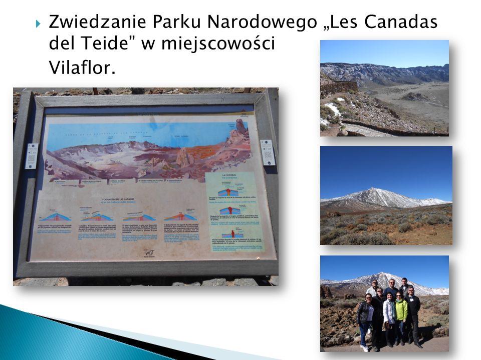 """ Zwiedzanie Parku Narodowego """"Les Canadas del Teide w miejscowości Vilaflor."""
