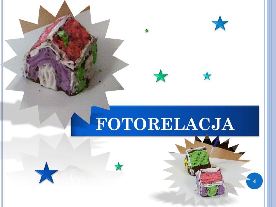 FOTORELACJA 4