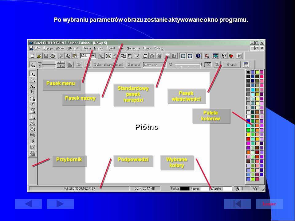 Po wybraniu parametrów obrazu zostanie aktywowane okno programu.