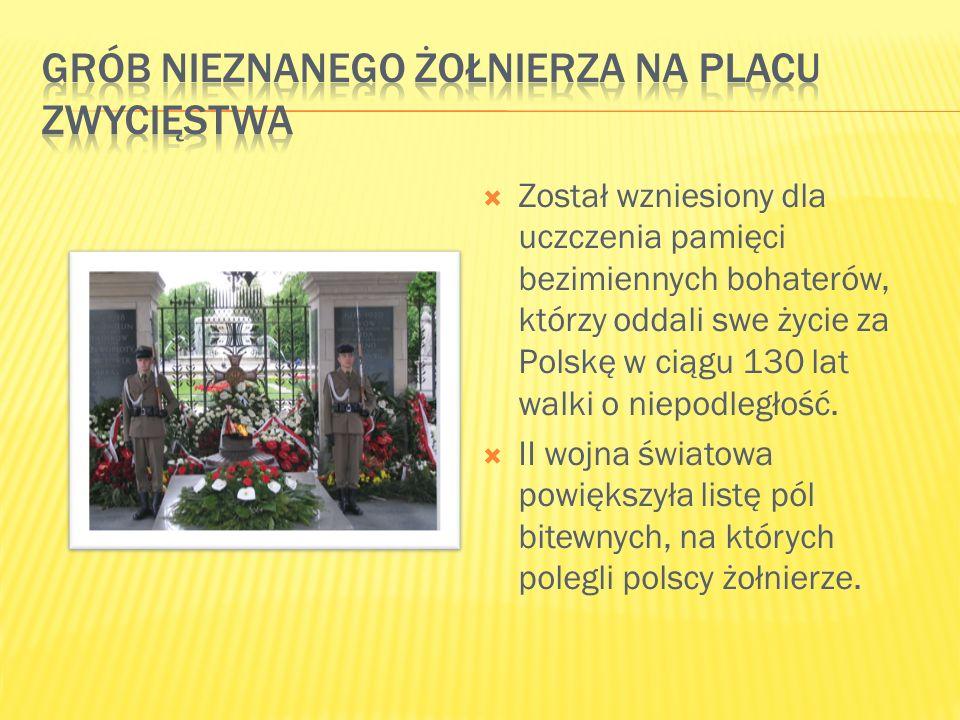  Został wzniesiony dla uczczenia pamięci bezimiennych bohaterów, którzy oddali swe życie za Polskę w ciągu 130 lat walki o niepodległość.  II wojna