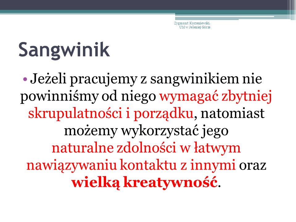 Sangwinik Jeżeli pracujemy z sangwinikiem nie powinniśmy od niego wymagać zbytniej skrupulatności i porządku, natomiast możemy wykorzystać jego natura
