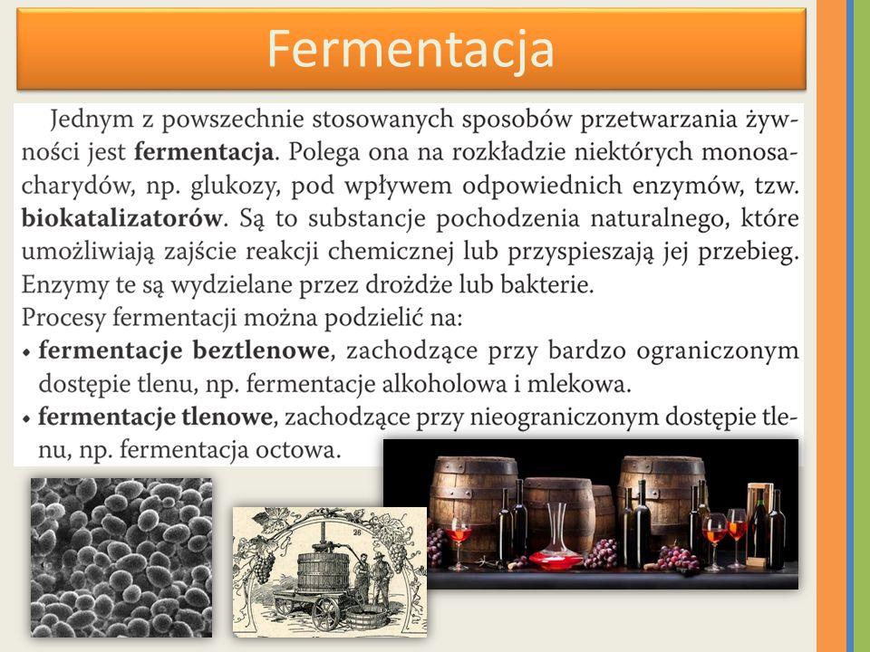 Fermentacja