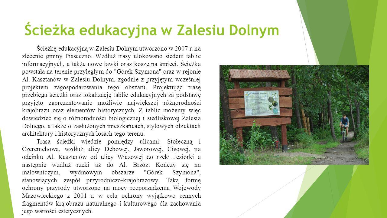 Ścieżka edukacyjna w Zalesiu Dolnym Ścieżkę edukacyjną w Zalesiu Dolnym utworzono w 2007 r.