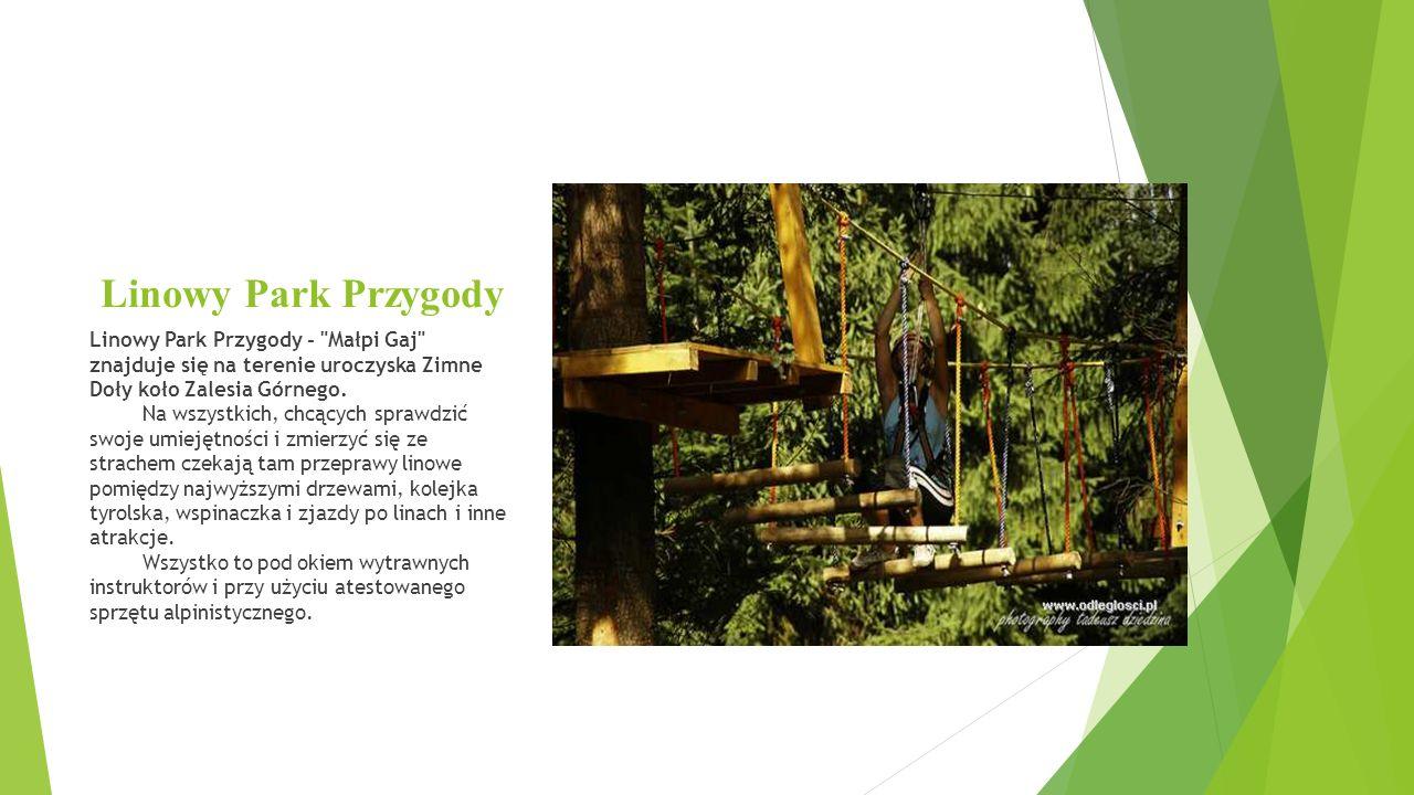 Linowy Park Przygody Linowy Park Przygody - Małpi Gaj znajduje się na terenie uroczyska Zimne Doły koło Zalesia Górnego.
