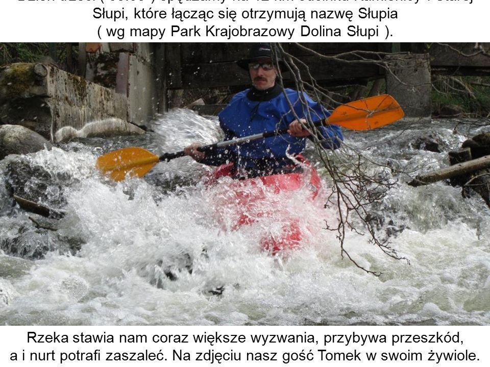 Dzień trzeci ( 03.05 ) spędzamy na 12 km odcinku Kamienicy i Starej Słupi, które łącząc się otrzymują nazwę Słupia ( wg mapy Park Krajobrazowy Dolina