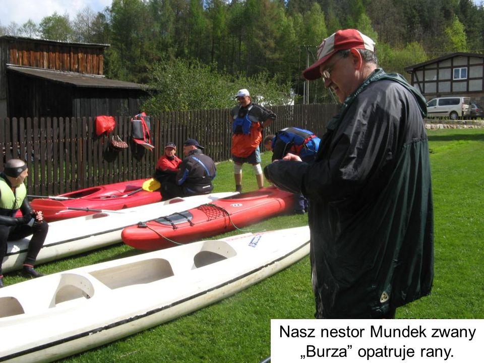 """Nasz nestor Mundek zwany """"Burza"""" opatruje rany."""