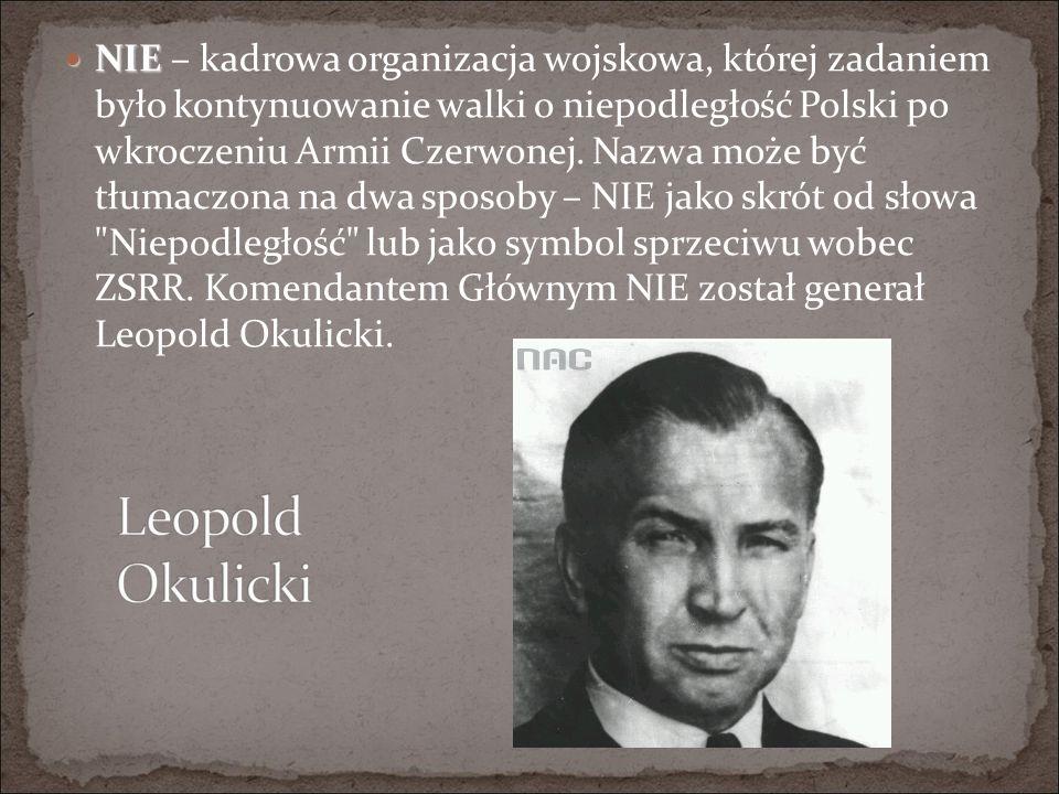 NIE NIE – kadrowa organizacja wojskowa, której zadaniem było kontynuowanie walki o niepodległość Polski po wkroczeniu Armii Czerwonej.