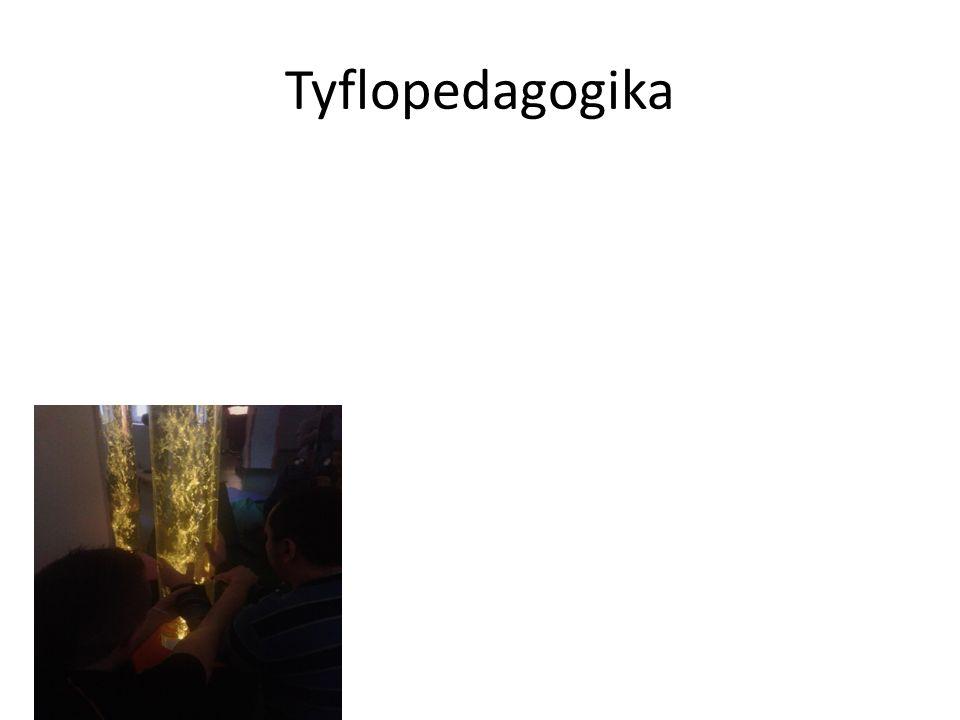 Tyflopedagogika
