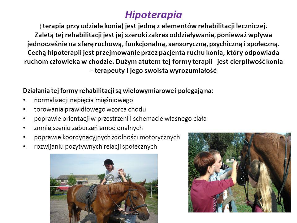 Hipoterapia ( terapia przy udziale konia) jest jedną z elementów rehabilitacji leczniczej. Zaletą tej rehabilitacji jest jej szeroki zakres oddziaływa