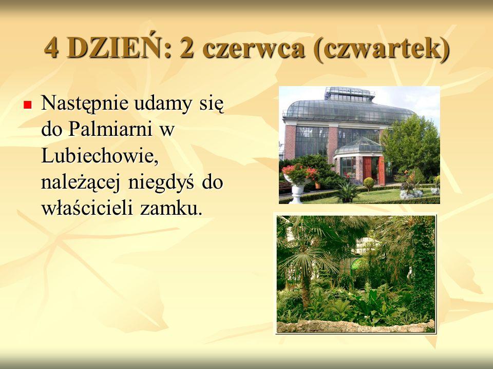 Następnie udamy się do Palmiarni w Lubiechowie, należącej niegdyś do właścicieli zamku.