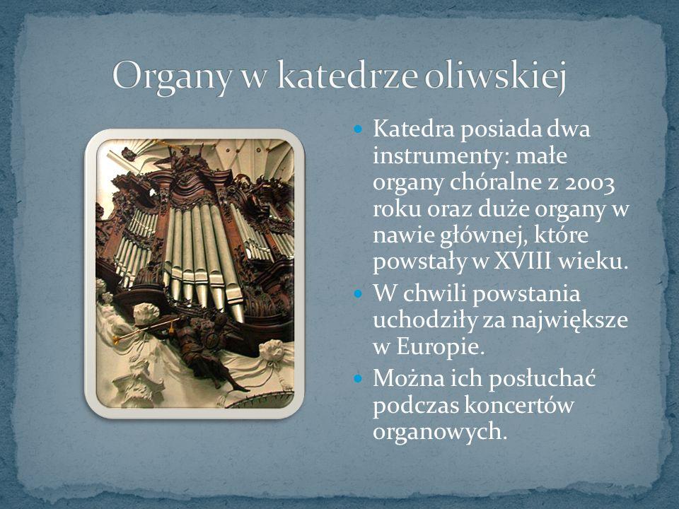Katedra posiada dwa instrumenty: małe organy chóralne z 2003 roku oraz duże organy w nawie głównej, które powstały w XVIII wieku.