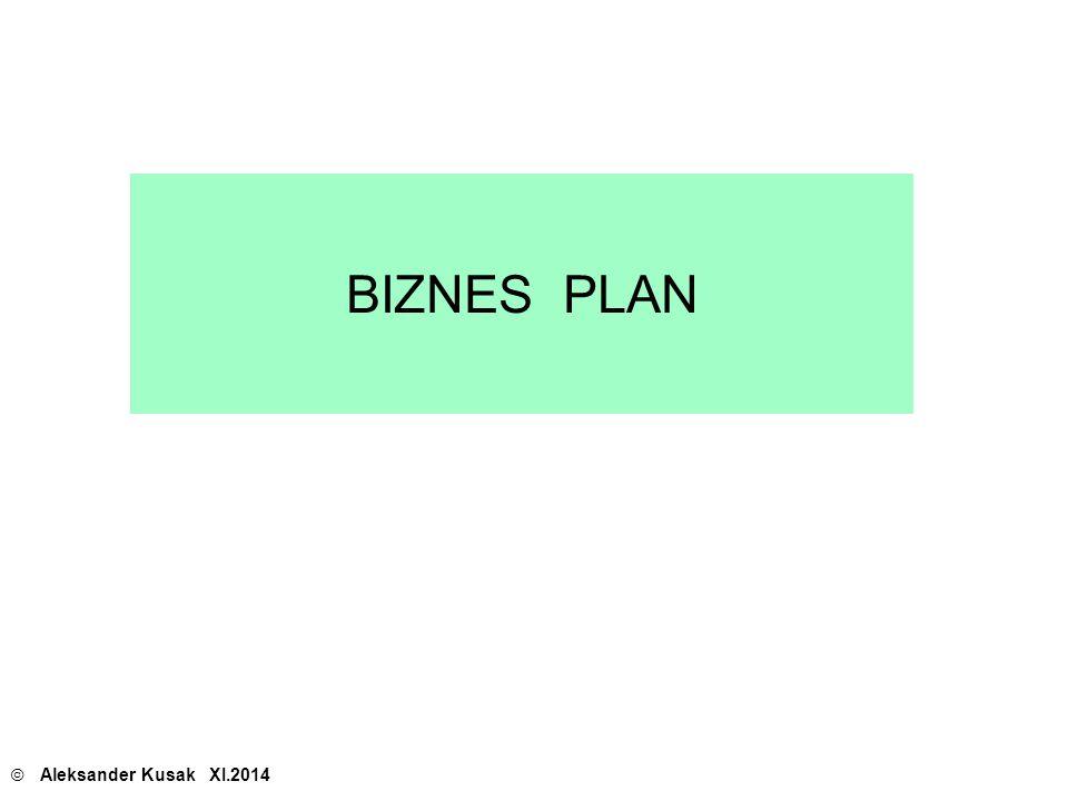 BIZNES PLAN © Aleksander Kusak XI.2014