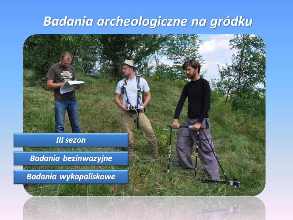 Badania archeologiczne na gródku III sezon Badania bezinwazyjne Badania wykopaliskowe