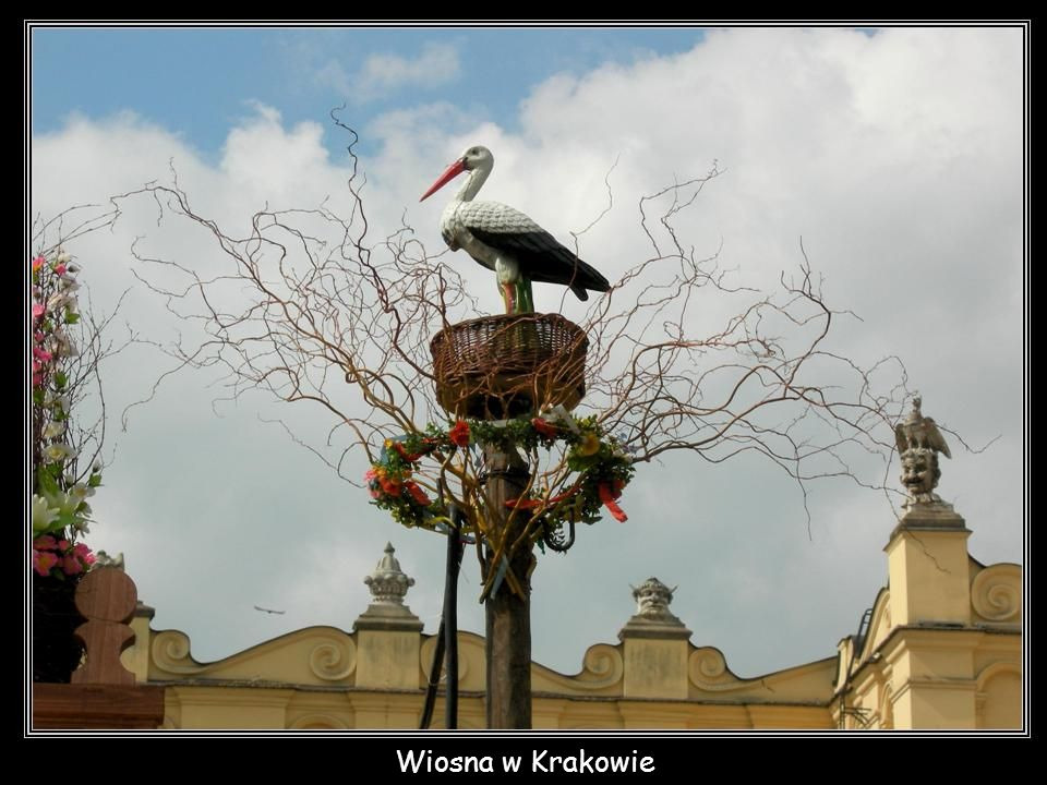 Krakowskie bajgle - obwarzanki