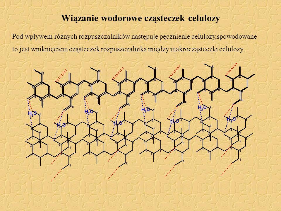 Wiązanie wodorowe cząsteczek celulozy Pod wpływem różnych rozpuszczalników następuje pęcznienie celulozy,spowodowane to jest wniknięciem cząsteczek ro
