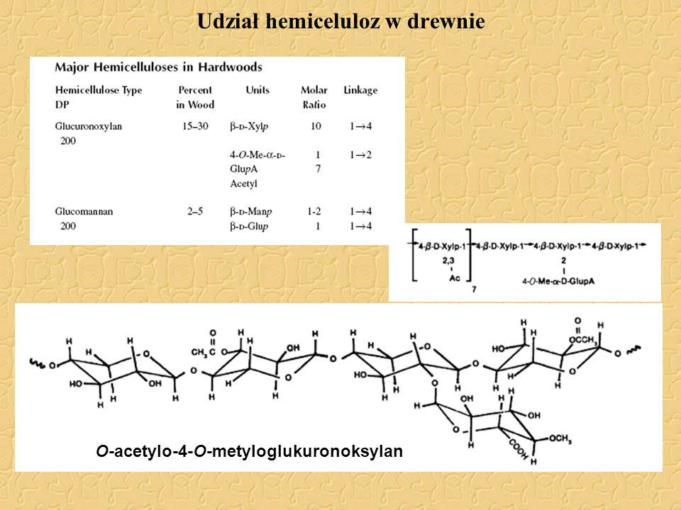 Udział hemiceluloz w drewnie O-acetylo-4-O-metyloglukuronoksylan