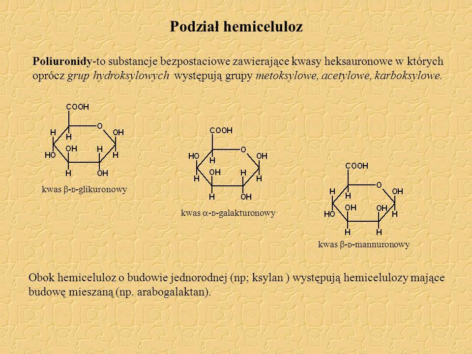 Podział hemiceluloz Poliuronidy-to substancje bezpostaciowe zawierające kwasy heksauronowe w których oprócz grup hydroksylowych występują grupy metoks