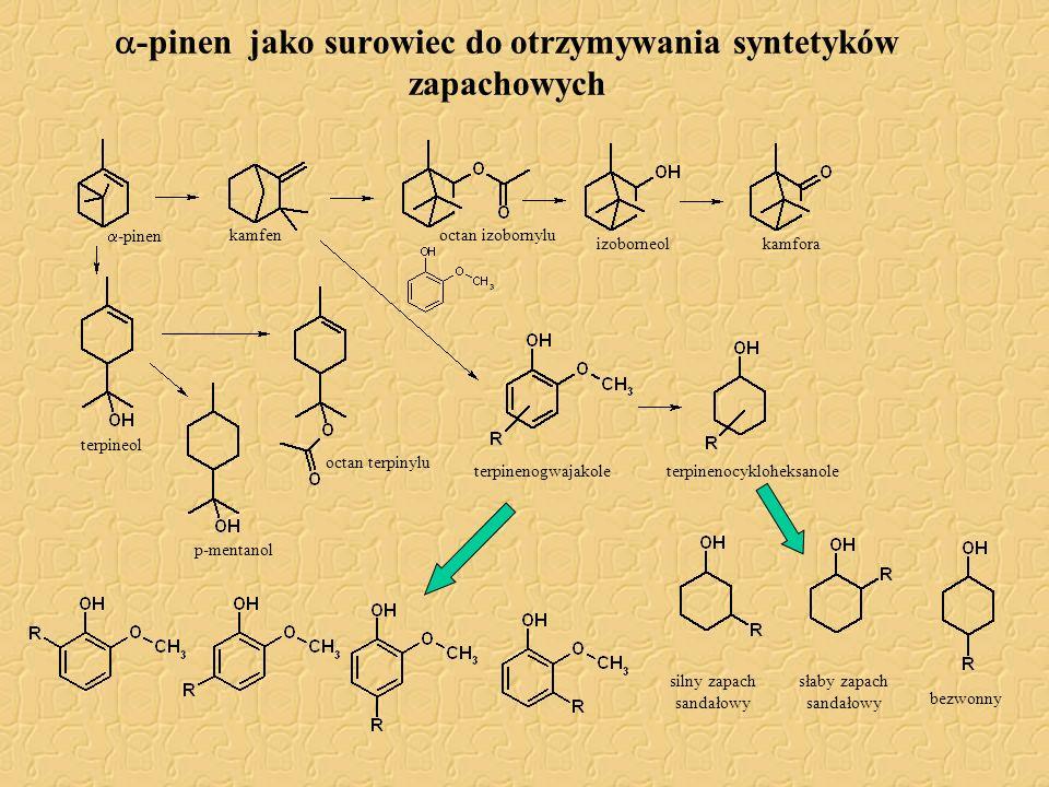  -pinen jako surowiec do otrzymywania syntetyków zapachowych  -pinen kamfen izoborneol terpineol kamfora p-mentanol octan izobornylu terpinenogwajak