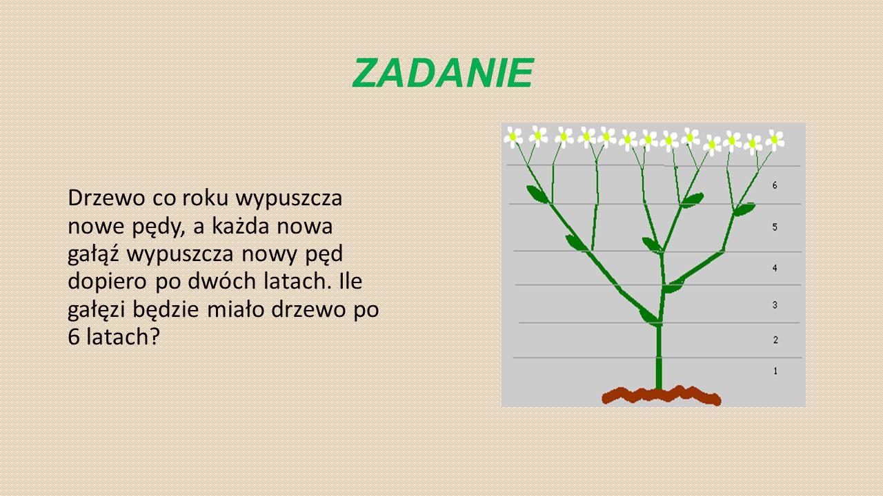 ZADANIE Drzewo co roku wypuszcza nowe pędy, a każda nowa gałąź wypuszcza nowy pęd dopiero po dwóch latach. Ile gałęzi będzie miało drzewo po 6 latach?