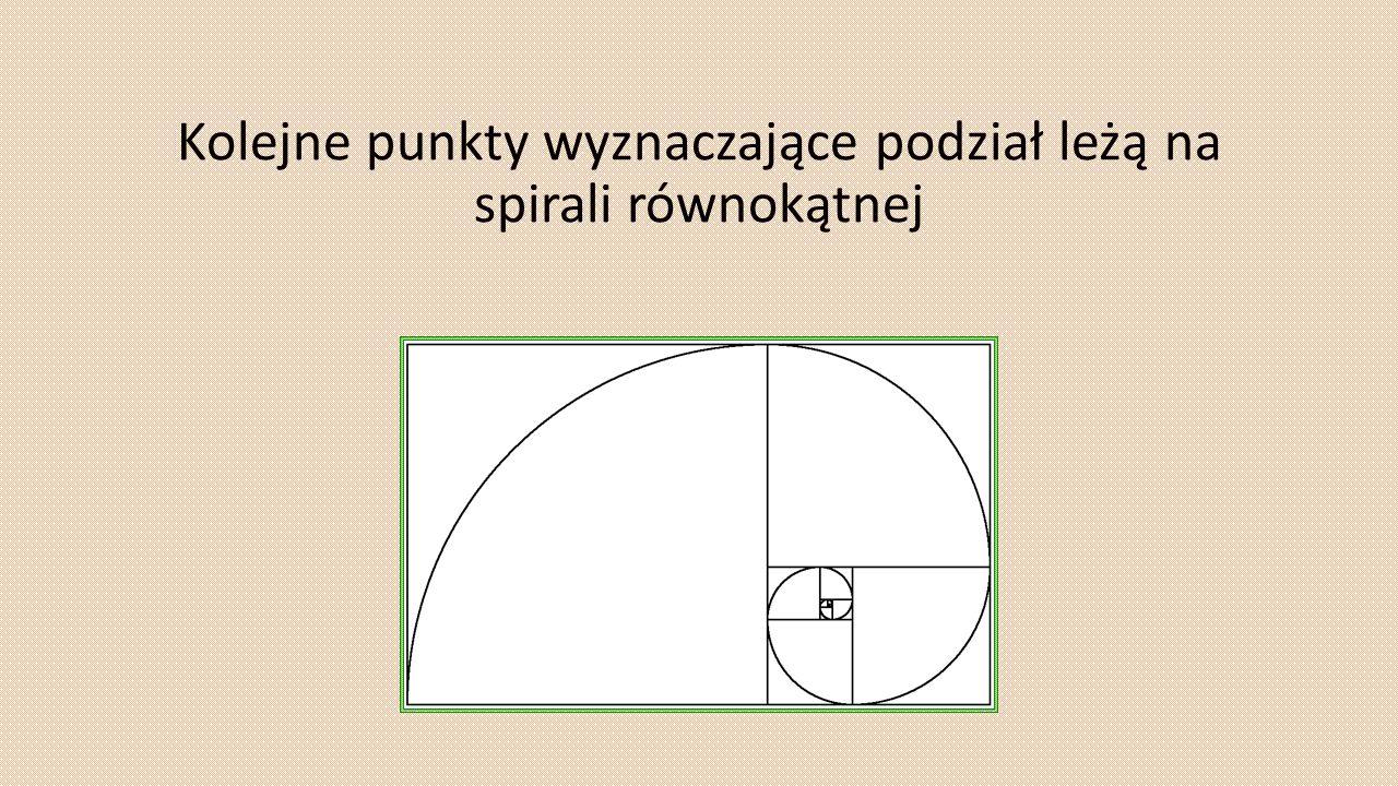 Kolejne punkty wyznaczające podział leżą na spirali równokątnej