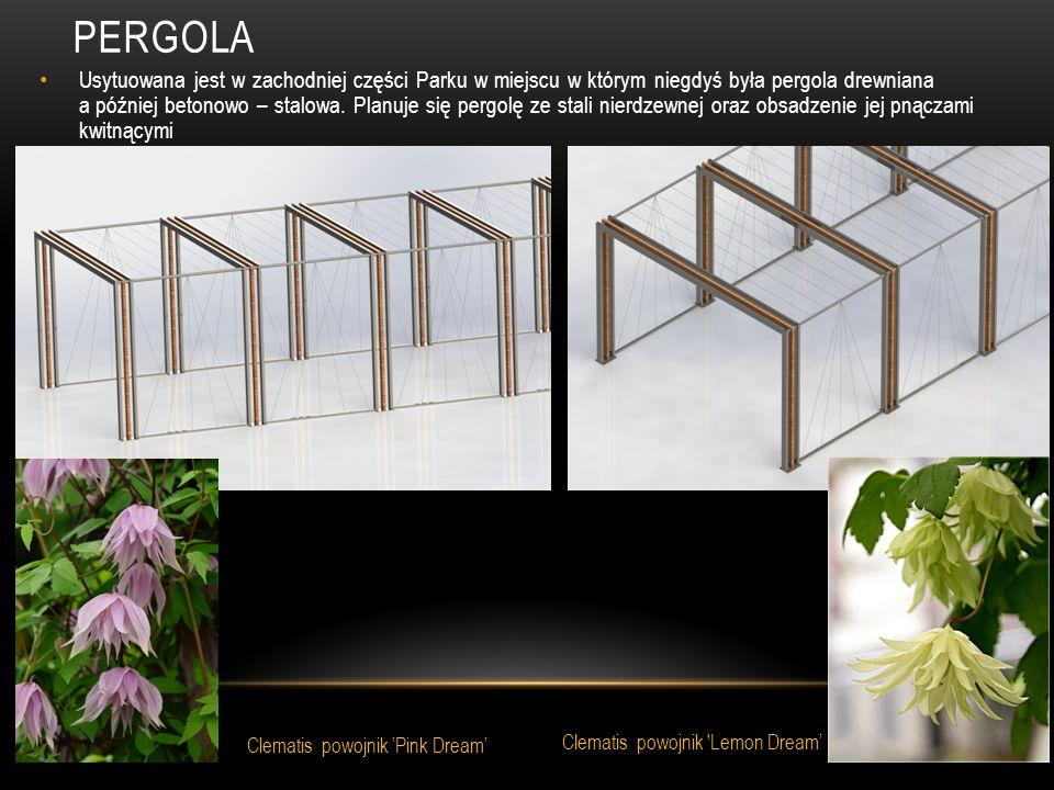 PERGOLA Usytuowana jest w zachodniej części Parku w miejscu w którym niegdyś była pergola drewniana a później betonowo – stalowa. Planuje się pergolę