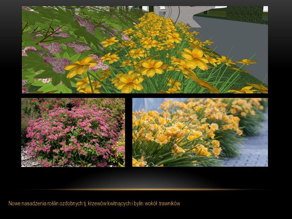 Nowe nasadzenia roślin ozdobnych tj. krzewów kwitnących i bylin wokół trawników