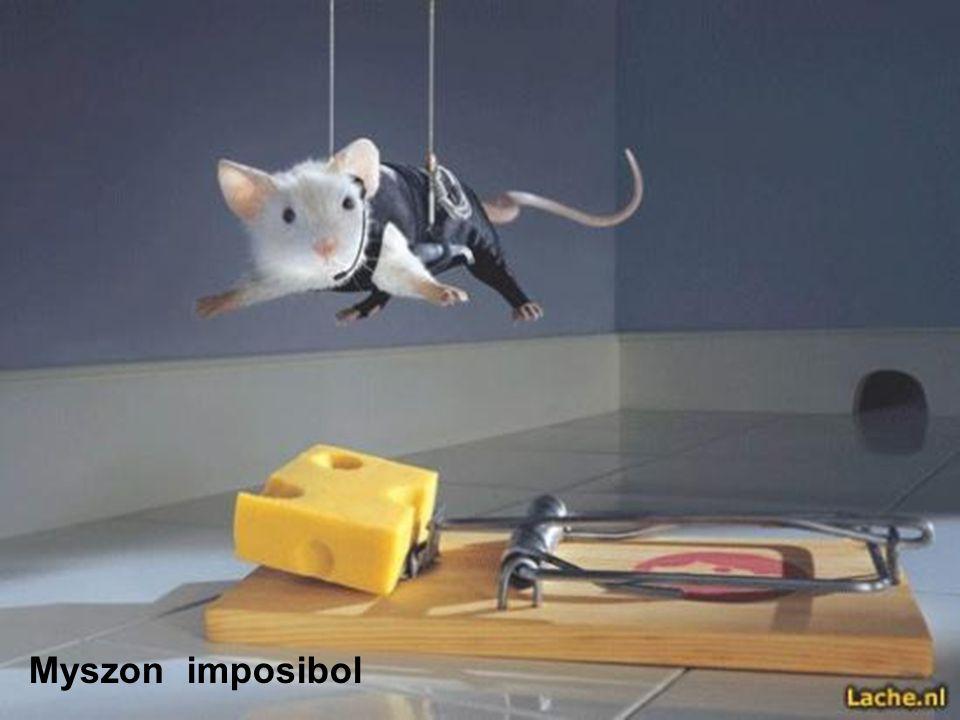 Myszon imposibol