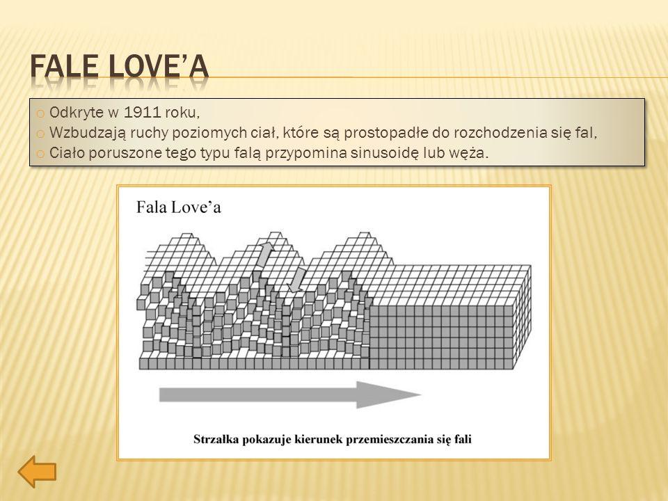 o Odkryte w 1911 roku, o Wzbudzają ruchy poziomych ciał, które są prostopadłe do rozchodzenia się fal, o Ciało poruszone tego typu falą przypomina sin