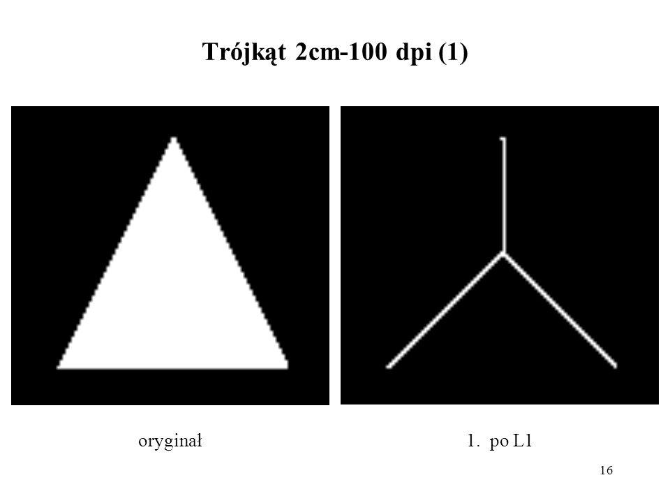 16 Trójkąt 2cm-100 dpi (1) 1. po L1oryginał