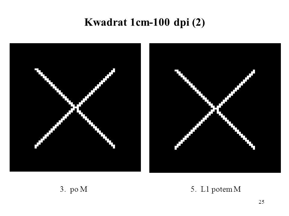 25 Kwadrat 1cm-100 dpi (2) 5. L1 potem M3. po M