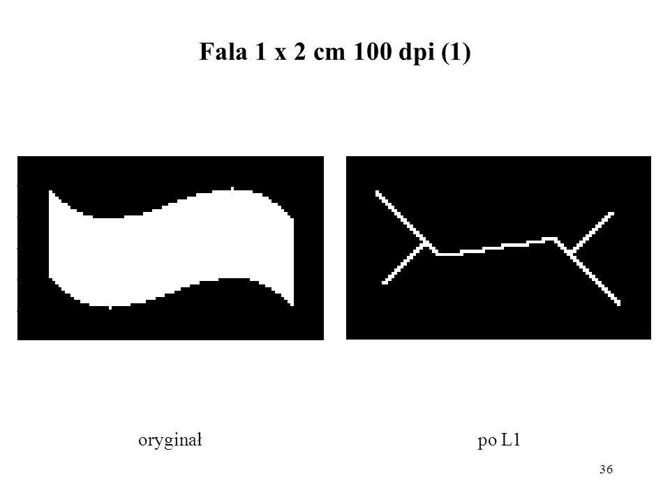 36 Fala 1 x 2 cm 100 dpi (1) po L1oryginał