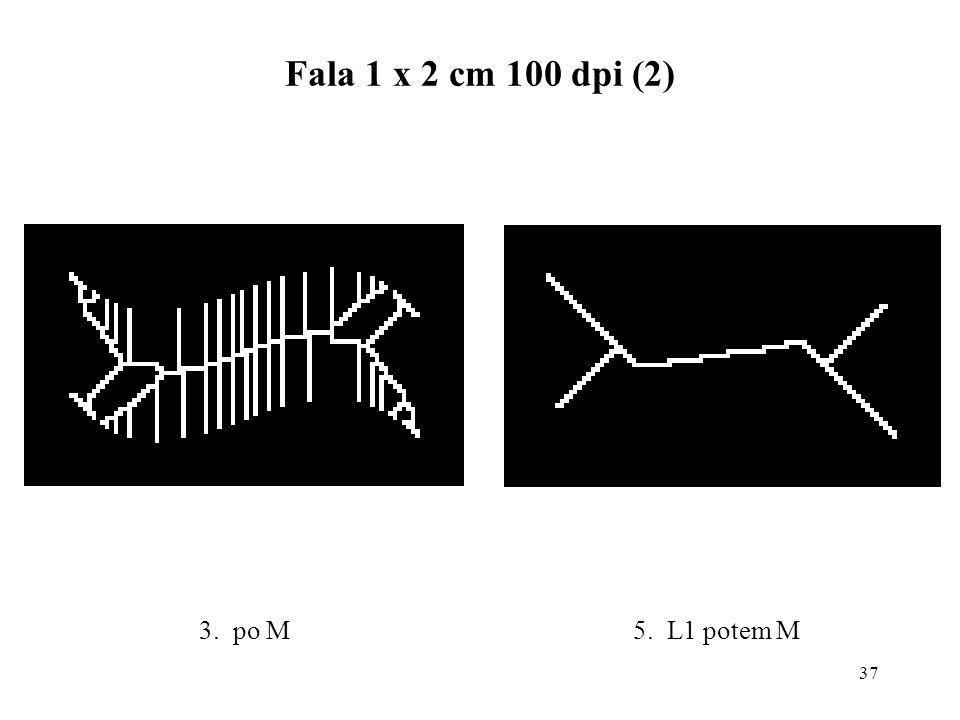 37 Fala 1 x 2 cm 100 dpi (2) 5. L1 potem M3. po M