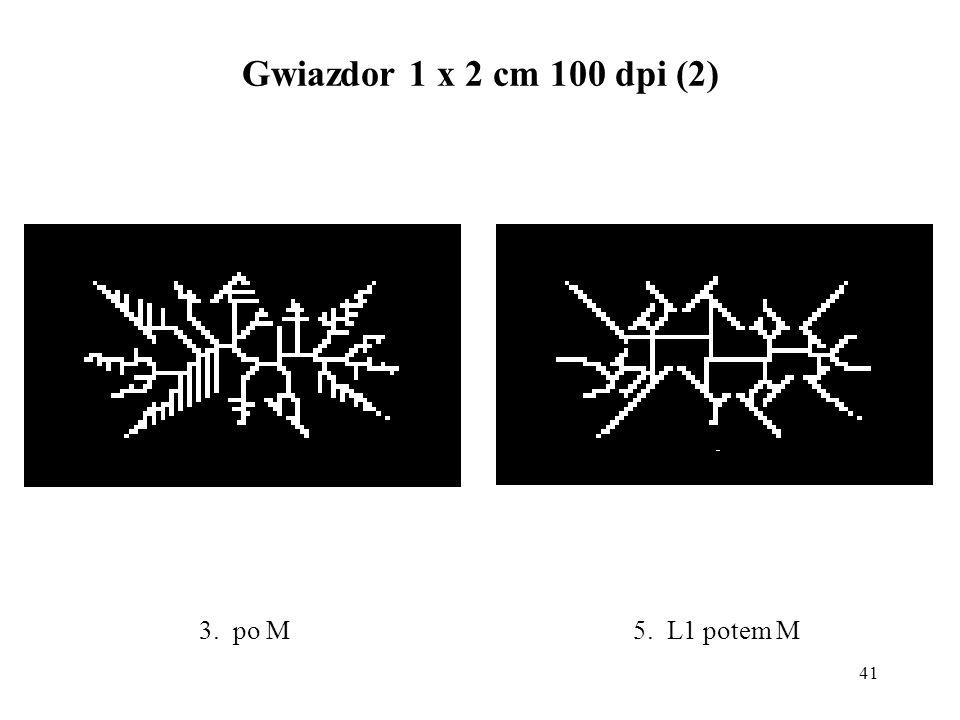 41 Gwiazdor 1 x 2 cm 100 dpi (2) 5. L1 potem M3. po M