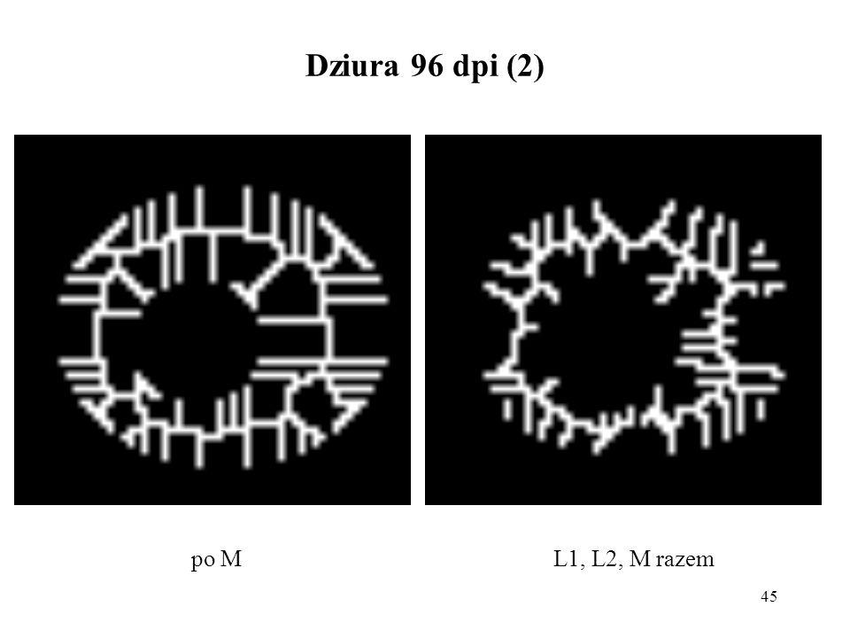 45 Dziura 96 dpi (2) L1, L2, M razempo M