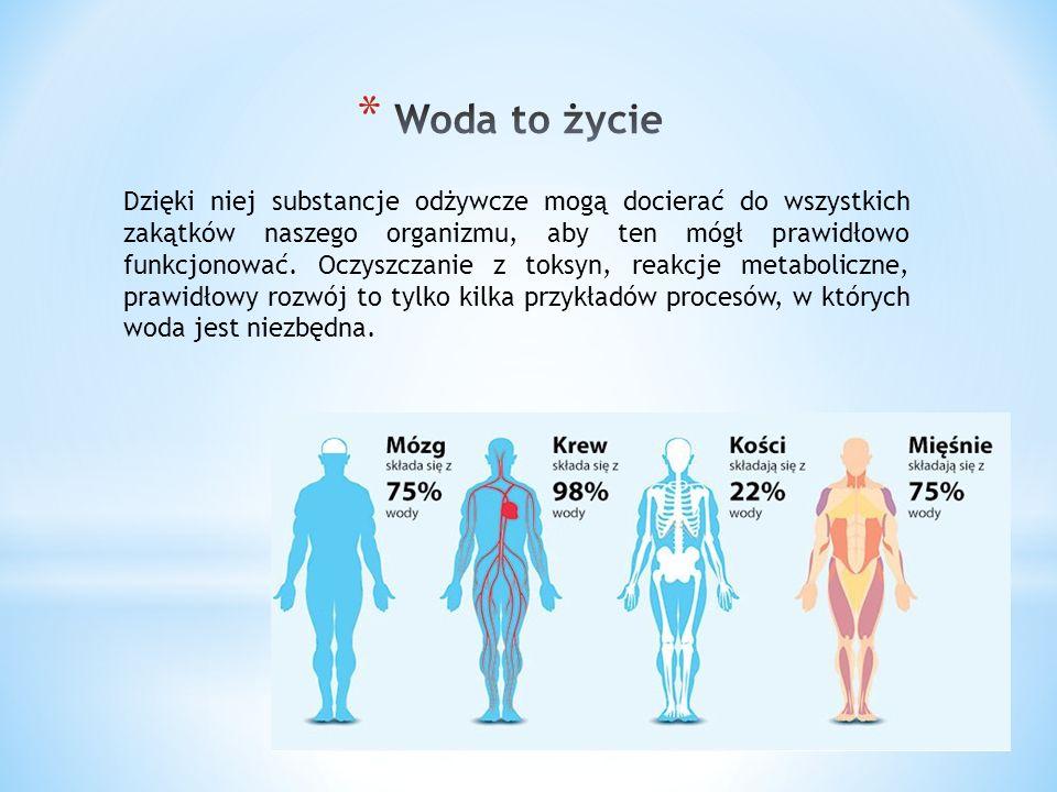 Dzięki niej substancje odżywcze mogą docierać do wszystkich zakątków naszego organizmu, aby ten mógł prawidłowo funkcjonować.