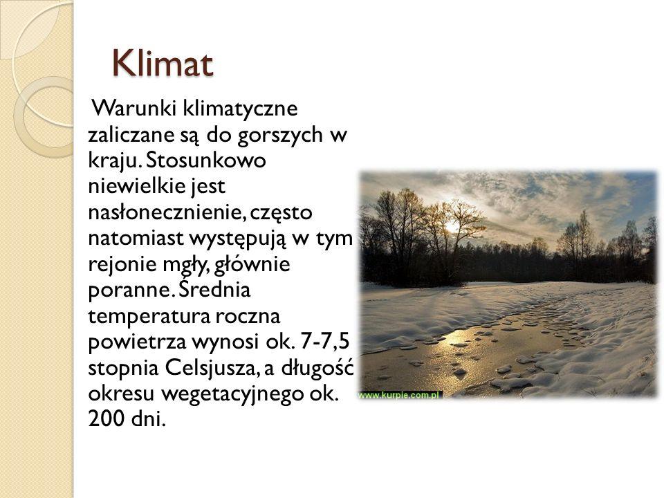 Klimat Warunki klimatyczne zaliczane są do gorszych w kraju. Stosunkowo niewielkie jest nasłonecznienie, często natomiast występują w tym rejonie mgły