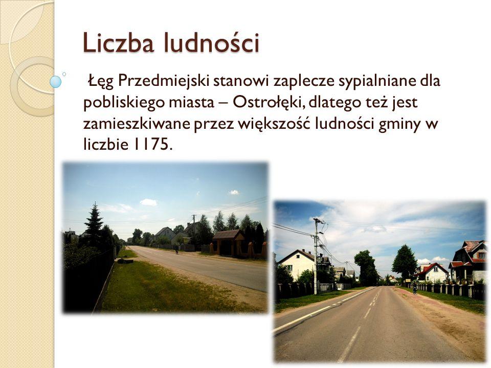 Liczba ludności Łęg Przedmiejski stanowi zaplecze sypialniane dla pobliskiego miasta – Ostrołęki, dlatego też jest zamieszkiwane przez większość ludno