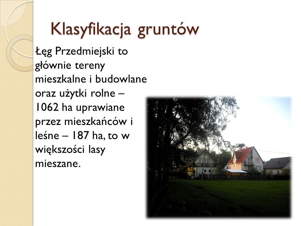 Klasyfikacja gruntów Łęg Przedmiejski to głównie tereny mieszkalne i budowlane oraz użytki rolne – 1062 ha uprawiane przez mieszkańców i leśne – 187 h